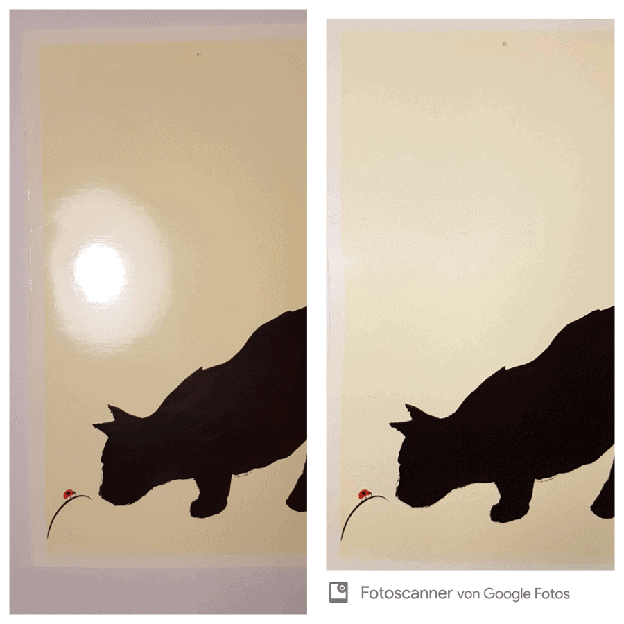 Fotoscanner von Google - Vergleich mit Foto