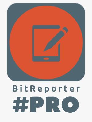 BitReporter pro Logo