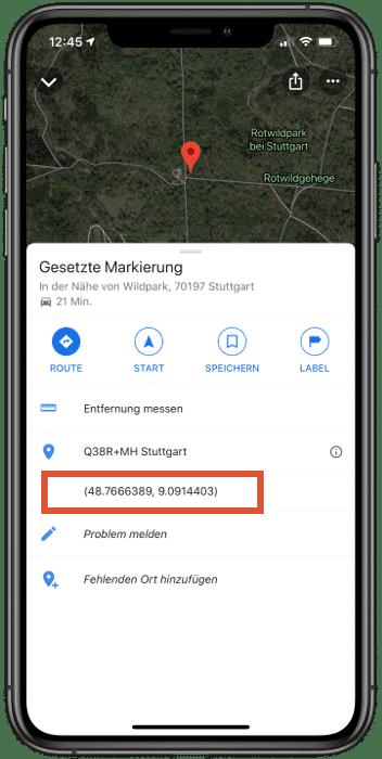 Google Maps Koordinaten in der App anzeigen